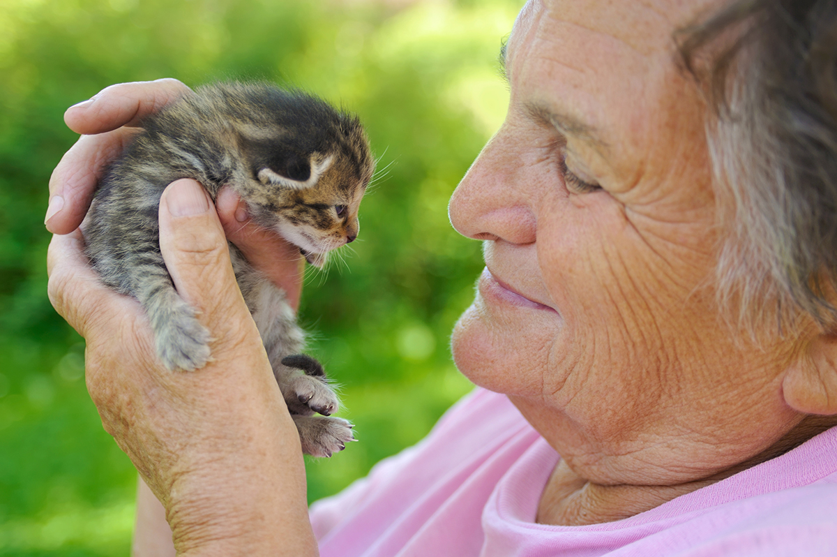 senior female with kitten